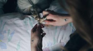 nuevo sencillo Hello Seahorse Mujer video
